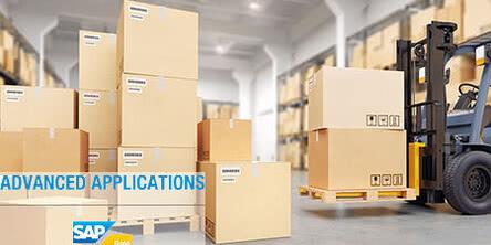 REINER und Advanced Applications entwickeln Best-Practice-Lösungen im SAP-Umfeld
