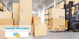 Solutions industrielles polyvalentes dans l'environnement SAP : qui cherche, trouvera !
